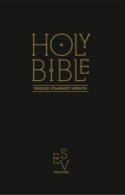 Holy Bible ESV paperpack